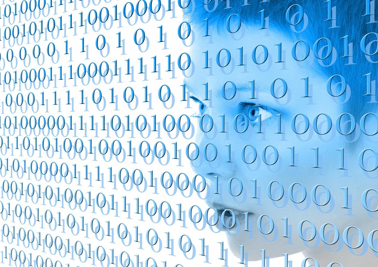 Online coding competition, Precognox